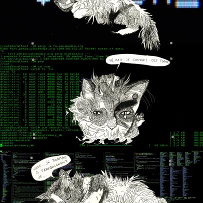 catlinux1